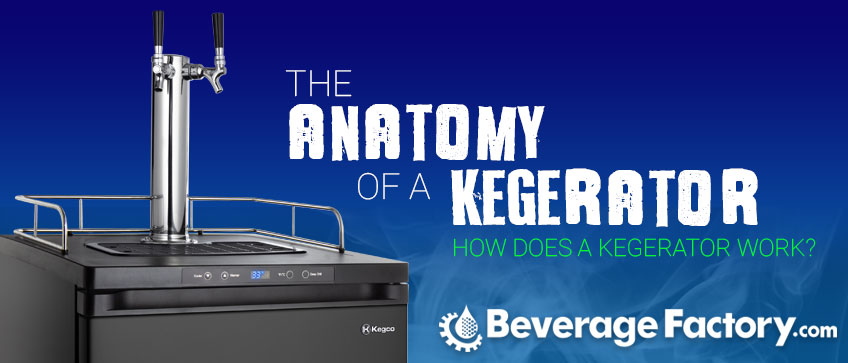 The Anatomy Of A Kegerator