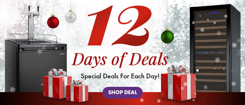 Twelve Days of Deals